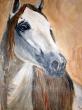 A-Horse