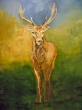 A-Deer-2