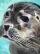 A-Seal